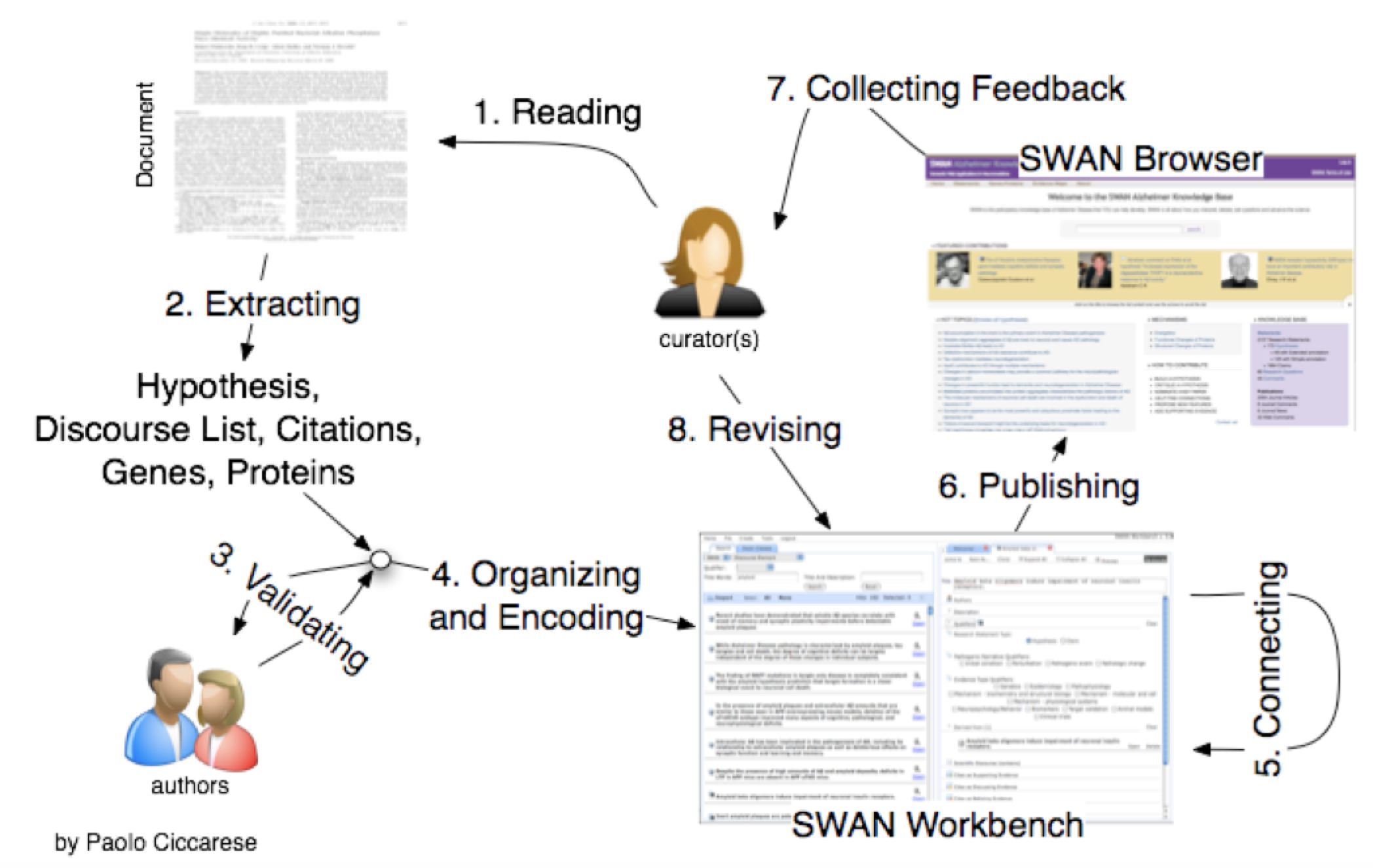 SWAN curation process by Dr. Paolo Ciccarese